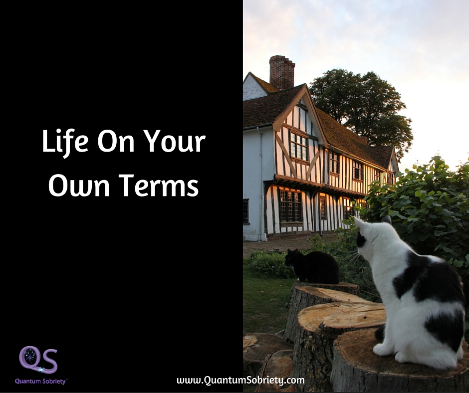 https://quantumsobriety.com/blog-life-on-your-own-terms/