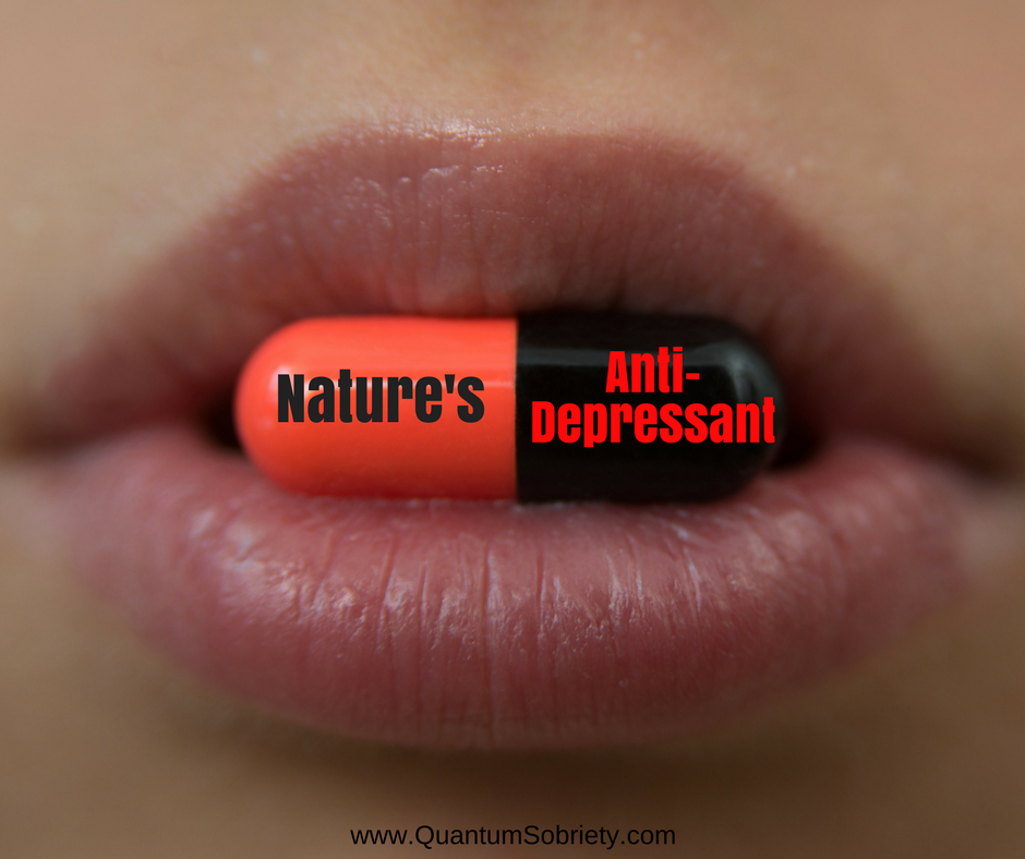 https://quantumsobriety.com/natures-anti-depressant/