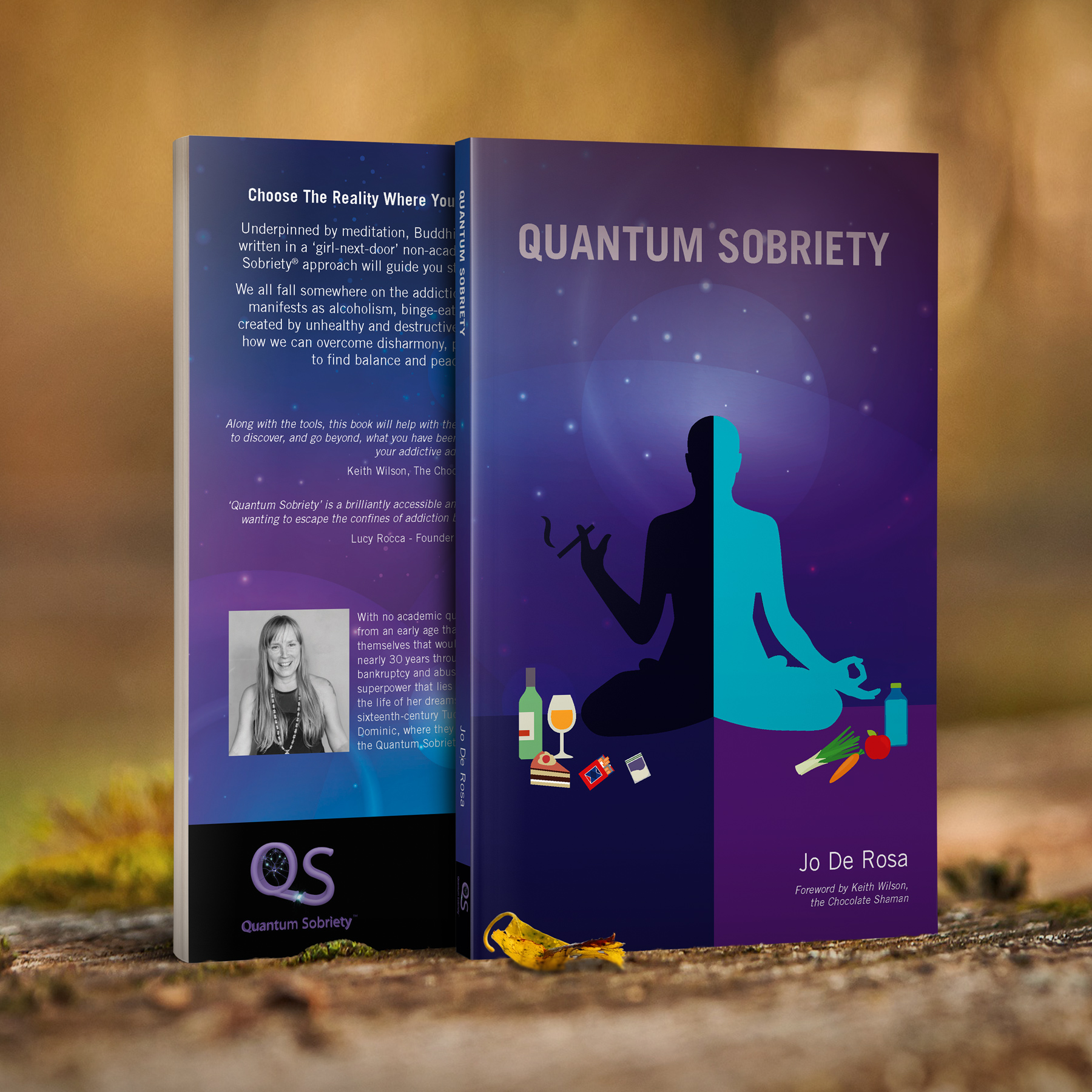 https://quantumsobriety.com/how-the-quantum-works/