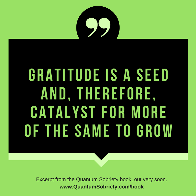 https://quantumsobriety.com/gratitude-is-a-seed/