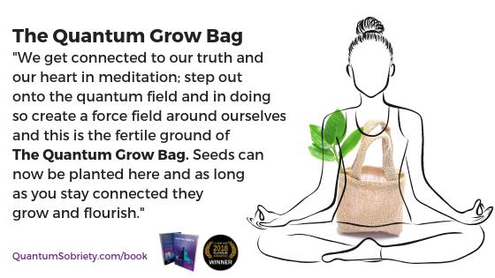 https://quantumsobriety.com/the-quantum-grow-bag/