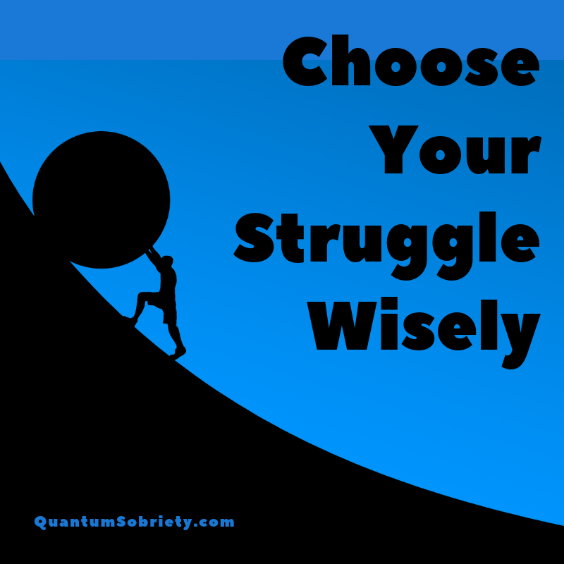 https://quantumsobriety.com/choose-your-struggle-wisely/