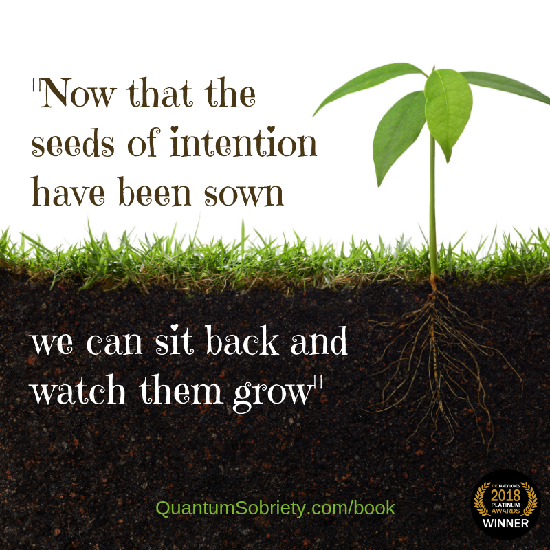 https://quantumsobriety.com/blog-the-seeds-of-intention/