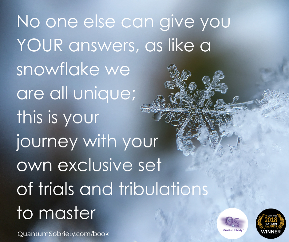 https://quantumsobriety.com/no-one-else-can-give-you-your-answers/