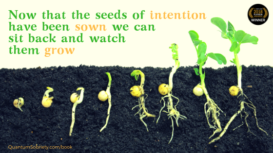 https://quantumsobriety.com/seeds-of-intention/