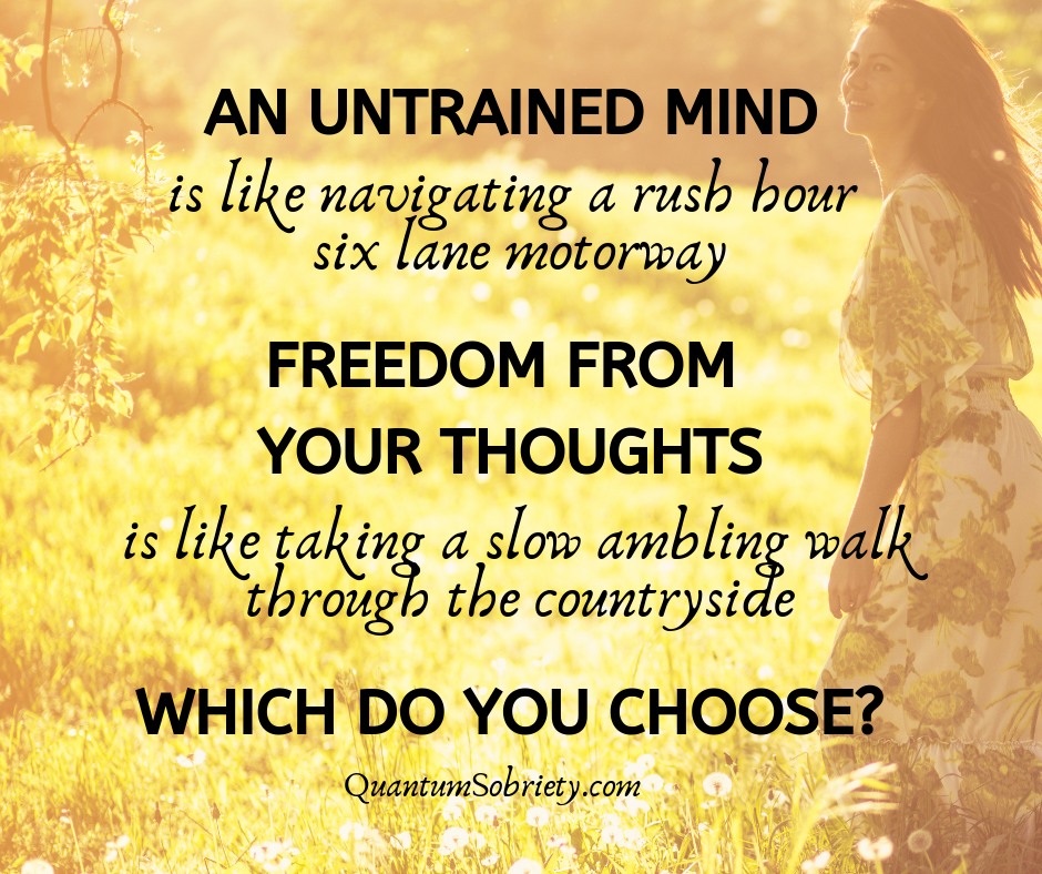 https://quantumsobriety.com/an-untrained-mind/