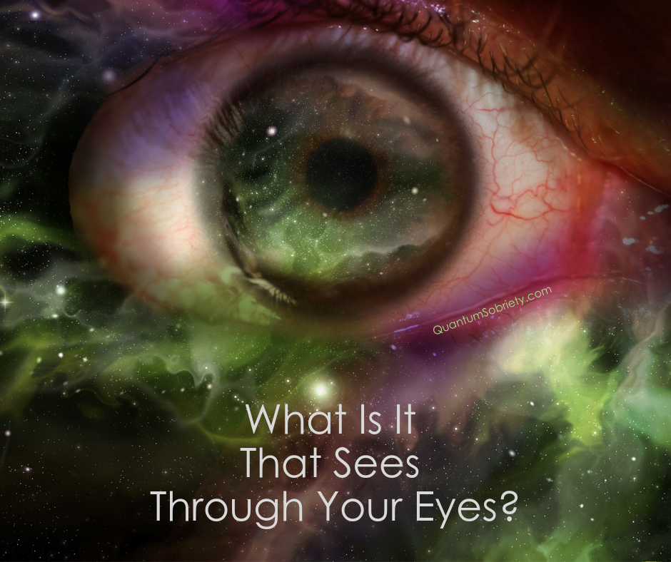 https://quantumsobriety.com/what-is-it-that-sees-through-your-eyes/